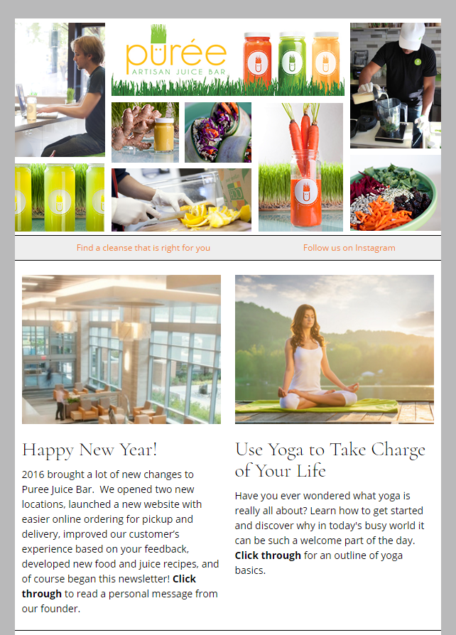 Puree Artisan Juice Bar Newsletter Sample